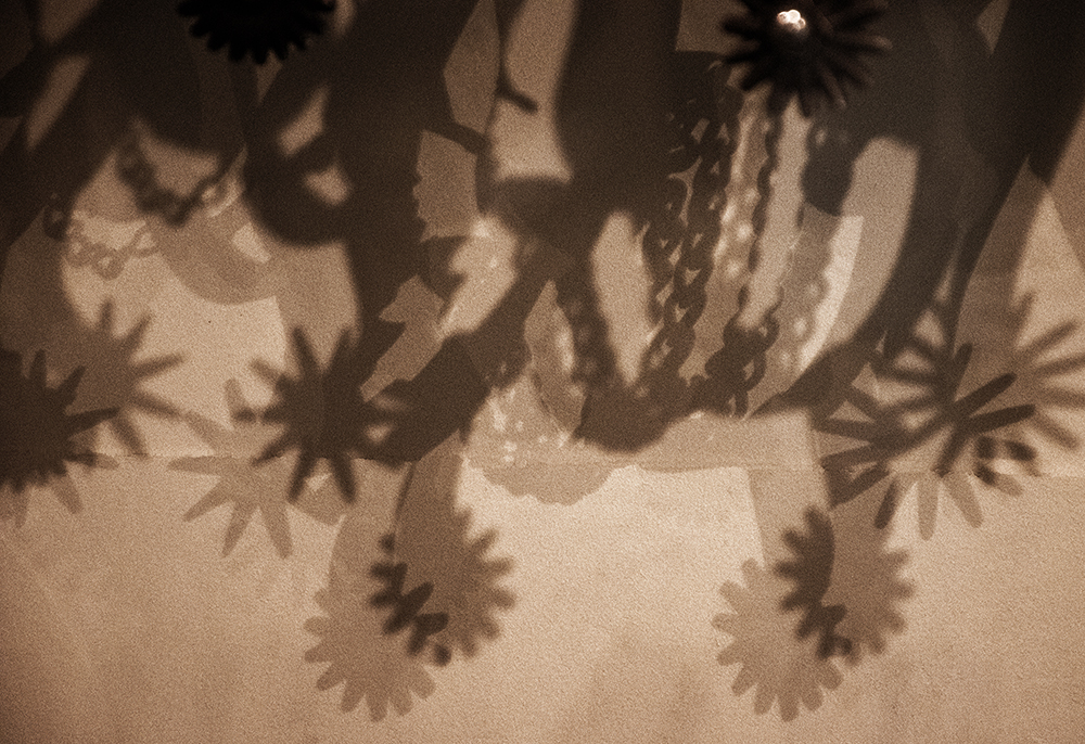 """""""Spur Shadows"""" Western Photography by Jenny Gummersall"""