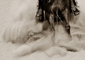 """""""Chica Stopping"""" Western Photography by Jenny Gummersall"""