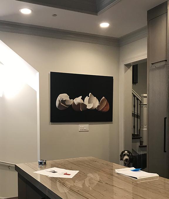EggInstall-Fredman_8-2018.jpg